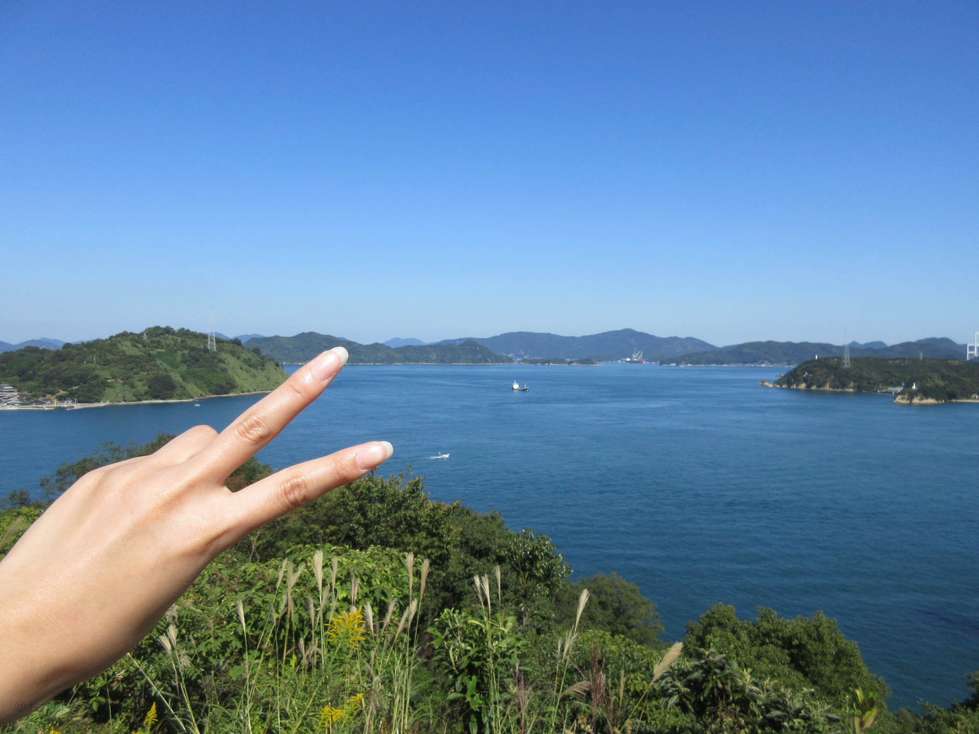 【サンライズ糸山】絶景!激ウマ!大自然満喫!の来島海峡を味わおう!