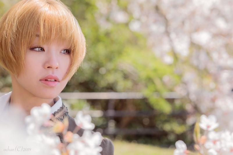 静岡 桜 ポートレート