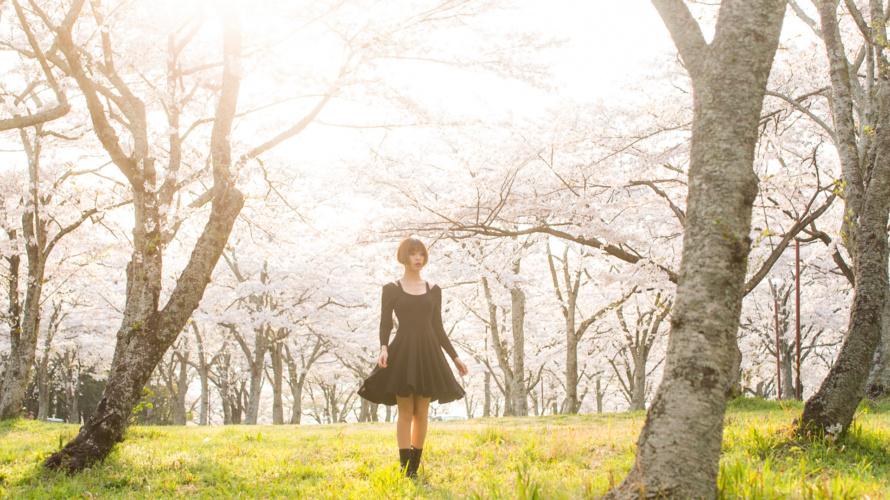 ポートレート 春 桜