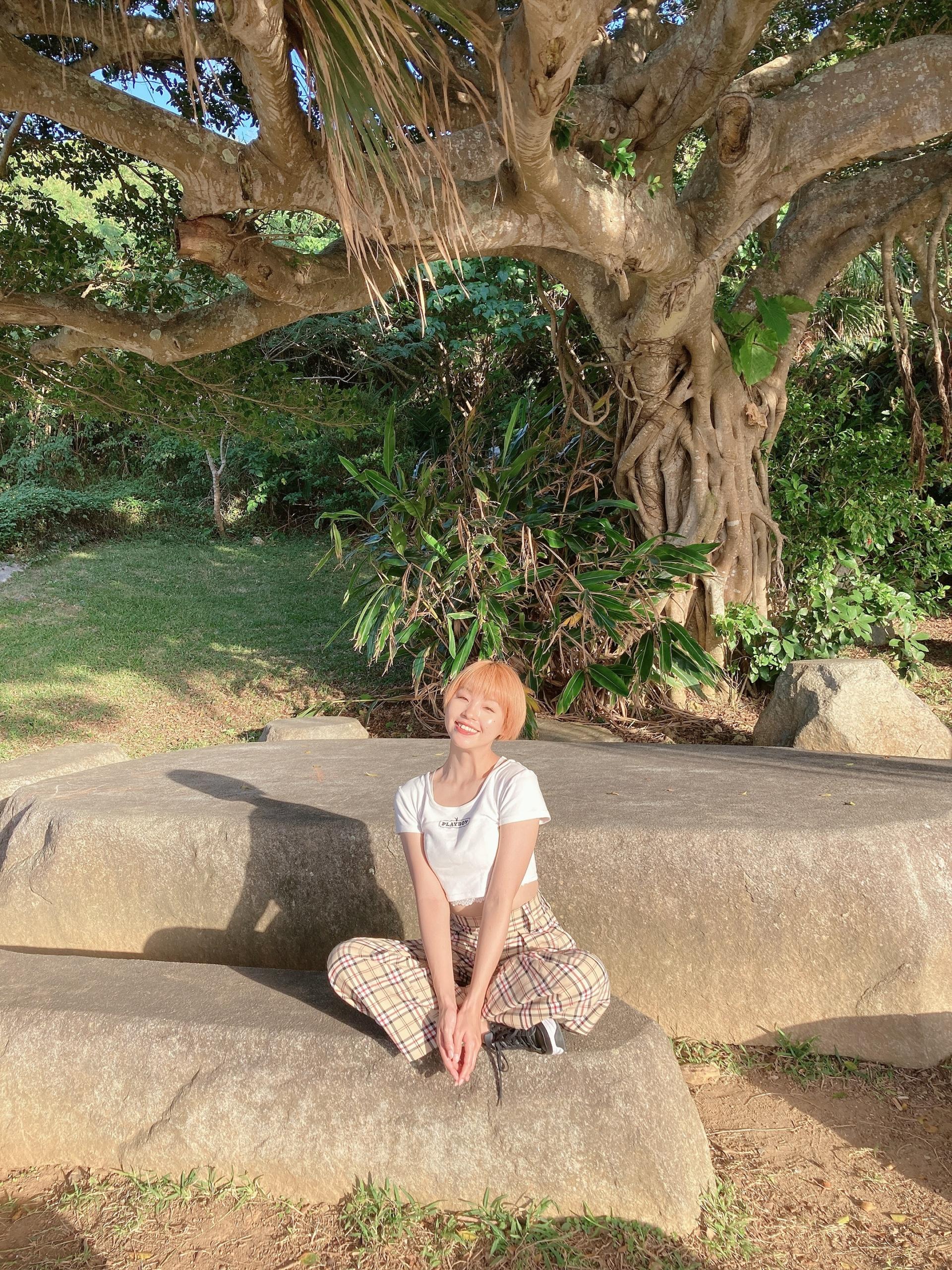 沖縄旅行 おすすめ 自然