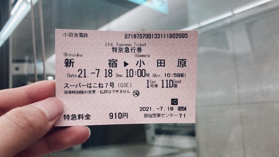 箱根ロマンスカーでいく!漁港と絶景の旅♡【写真いっぱい】
